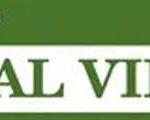 Journal of Medical Virology